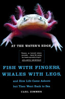 At the Water's Edge ebook