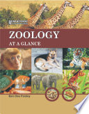 Zoology At A Glance