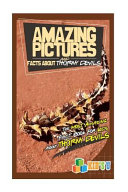 Pdf Amazing Pictures and Facts about Thorny Devils