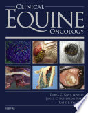 Clinical Equine Oncology E Book