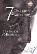 7 Treasures of Awakening Book