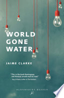 World Gone Water Book
