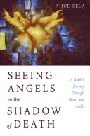 Seeing Angels in the Shadow of Death Book