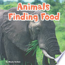 Animals Finding Food