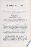 New North American Aquatic Bulrush Cyperaceae Scirpus Notulae Naturae Of The Acad Of Natural Sciences Of Phila No 427