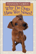 Why Do Dogs Have Wet Noses?
