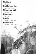Nation Building in Nineteenth Century Latin America Book