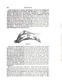 444 페이지