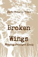 Broken Wings, Mending Damaged Souls
