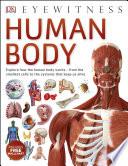 Human Body Book