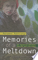 Memories of a Meltdown Book