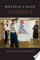 """""""Birthing a Slave: Motherhood and Medicine in the Antebellum South"""" by Marie Jenkins Schwartz, Professor of History and Department Chair History Department Marie Jenkins Schwartz"""