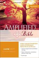 Amplified Bible-AM ebook