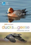 RSPB Spotlight Ducks and Geese Pdf/ePub eBook