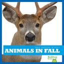 Animals in Fall [Pdf/ePub] eBook