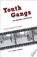 Youth Gangs and Community Intervention  : Research, Practice, and Evidence