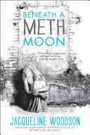Beneath a Meth Moon Pdf/ePub eBook