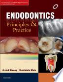 Endodontics  Principles and Practice E Book
