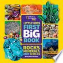 Little Kids First Big Book of Rocks  Minerals   Shells