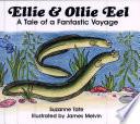 Ellie   Ollie Eel