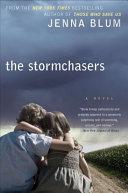 The Stormchasers Pdf/ePub eBook