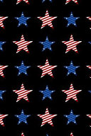 Patriotic Pattern   United States Of America 81