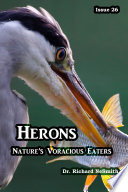 Herons: Nature's Voracious Eaters