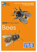 RSPB ID Spotlight   Bees