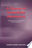 A Theory Of Immediate Awareness