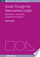 Guide through the Nanocarbon Jungle