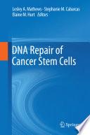 DNA Repair of Cancer Stem Cells