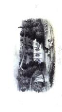 Sida 240
