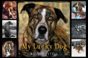 Pdf My Lucky Dog Telecharger