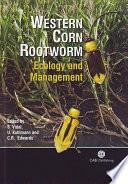 Western Corn Rootworm