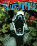 Pdf Black Mambas