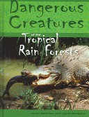 Dangerous Creatures Of The Tropical Rainforests