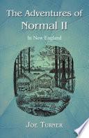 The Adventures of Normal II Book