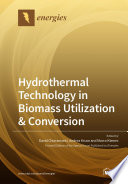 Hydrothermal Technology in Biomass Utilization   Conversion