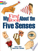 My First Book About the Five Sense