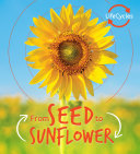 Lifecycles  Seed to Sunflower