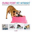 Older dog  No worries
