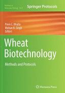 Wheat Biotechnology