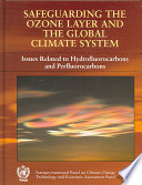 Safeguarding The Ozone Layer And The Global Climate System Book PDF