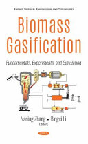 Biomass Gasification  Fundamentals  Experiments  and Simulation
