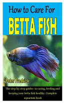 How to Care for Betta Fish