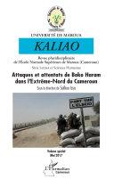 Pdf Attaques et attentats de Boko Haram dans l'Extrême-Nord du Cameroun Telecharger