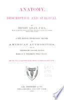 Anatomy, Descriptive and Surgical