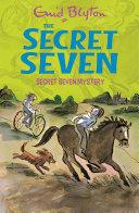 Secret Seven Mystery Pdf/ePub eBook