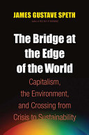 Pdf The Bridge at the Edge of the World