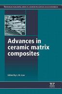 Advances in Ceramic Matrix Composites